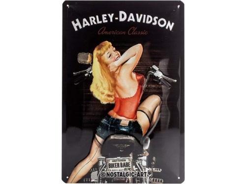 Plaque émaillée 20X30 cm. Collection Harley-Davidson.